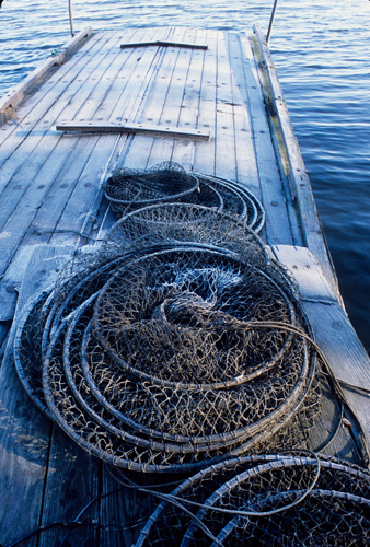 Dock, Nets and Lake/River