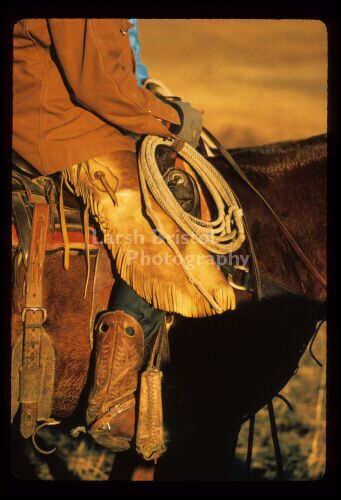 Cowboy leg