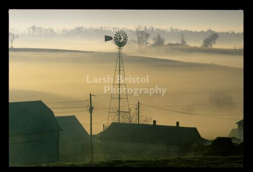 Weather vane in early morning fog