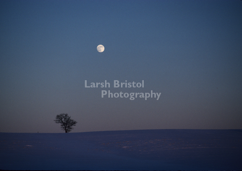 Moon over snow covered field
