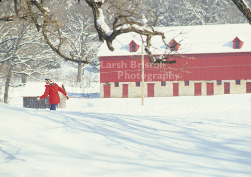 Cross Country Skier near Red Barn