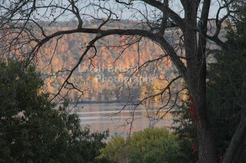 Mississippi Landscape