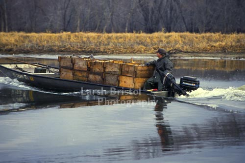 Fishing Boat and Boxes of Fish